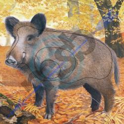 Animal Face Wild Boar