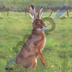Animal Face Hare